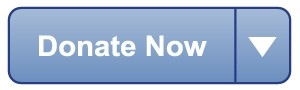 Donate Now button for making donations.